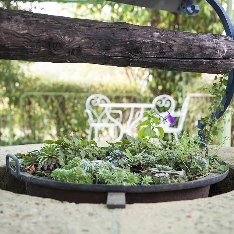 auxforgesdelarose-gite-jardin-teille